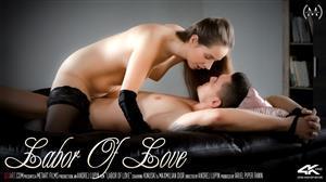 sexart-20-02-11-kinuski-labor-of-love.jpg