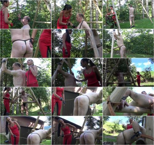 Testing A New Single Tail Whip: Entire Movie [HD 720P] Watch Online