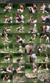 135717088_a-day-in-the-forest-wmv.jpg