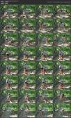 135719766_special-yoga-with-nancy_nancy22-avi.jpg