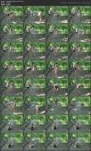 135719776_special-yoga-with-nancy_nancy23-avi.jpg